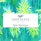 Spa Springs